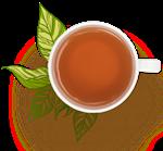 buy green tea in bulk