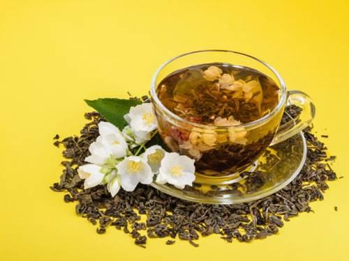 jasmine tea fanusta green